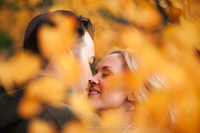autumn engagement session by award winning photographers Love Tree Photography