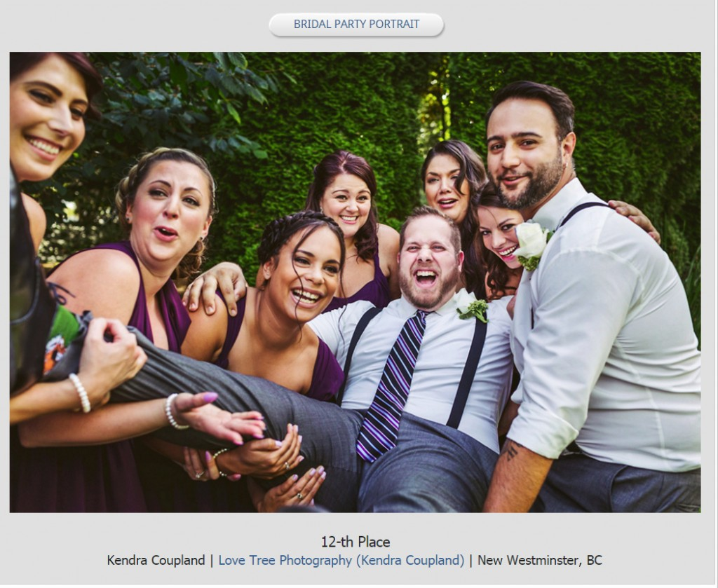 funny wedding party portraits