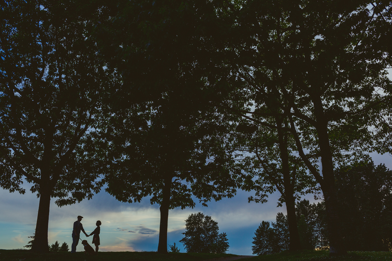 silhouette of a couple walking their dog