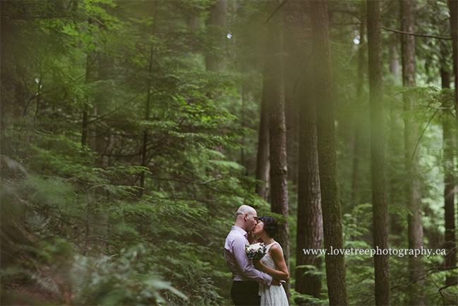 Pacific Northwest Forest Elopement